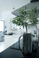 Bildnr.: 11017680<br/><b>Feature: 00790027 - Klare Kontraste</b><br/>Haus eines Fotografen in Gustafs, Schweden<br />living4media / Bj&#246;rnsdotter, Magdalena