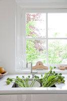 Bildnr.: 11006668<br/><b>Feature: 00790114 - Spiel der Kontraste</b><br/>A country house belonging to an interior designer, Niederlande<br />living4media / Claessens, Bieke