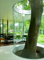 Bildno.: 11017422<br/><b>Feature: 11017413 - Gourmets&#39; Pavilion</b><br/>Working in glass boxes around an old tree<br />living4media / Limbour, Bertrand