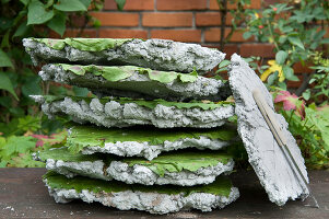 Bildno.: 11018796<br/><b>Feature: 11018783 - Rhubarb to Go</b><br/>Home-made garden stepping stones made from rhubarb leaves<br />living4media / Casper-Zielonka, Susanne