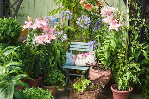 Bildno.: 11053616<br/><b>Feature: 11053585 - Private Paradise</b><br/>City garden in London<br />living4media / Burgess, Linda