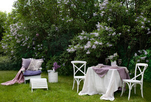 Bildno.: 11126202<br/><b>Feature: 11126197 - Lilac and Leisure</b><br/>Lilacs and the scent of summer<br />living4media / Nordstrom, Annette