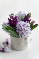 Bildno.: 11144892<br/><b>Feature: 11144875 - Hyacinths for Easter</b><br/>Blue, pink or white – hyacinths bring scent and sensibility to every table<br />living4media / Schindler, Martina