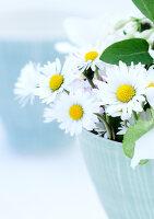 Bildnr.: 11146876<br/><b>Feature: 11146866 - Tausendsch&#246;n</b><br/>G&#228;nsebl&#252;mchen, die Wiesen-Fee unter den Blumen, als Deko<br />living4media / Bauer, Christine
