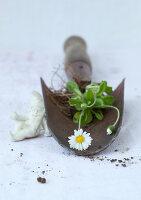 Bildnr.: 11146878<br/><b>Feature: 11146866 - Tausendsch&#246;n</b><br/>G&#228;nsebl&#252;mchen, die Wiesen-Fee unter den Blumen, als Deko<br />living4media / Bauer, Christine