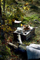 Bildno.: 11155654<br/><b>Feature: 11155636 - Forest Fun</b><br/>Roughing it in the autumn forest in Norway<br />living4media / Annette &amp; Christian