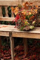 Bildno.: 11188284<br/><b>Feature: 11188280 - Autumn Magic</b><br/>The garden yields colourful leaves, nuts and fruit to decorate your home<br />living4media / Raider, Peter