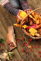 Bildno.: 11188290<br/><b>Feature: 11188280 - Autumn Magic</b><br/>The garden yields colourful leaves, nuts and fruit to decorate your home<br />living4media / Raider, Peter