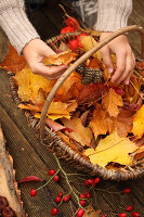 Bildno.: 11188292<br/><b>Feature: 11188280 - Autumn Magic</b><br/>The garden yields colourful leaves, nuts and fruit to decorate your home<br />living4media / Raider, Peter
