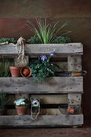 Bildno.: 11204880<br/><b>Feature: 11204844 - Trash to Treasure</b><br/>How to transform transport pallets into furniture<br />living4media / Raider, Peter