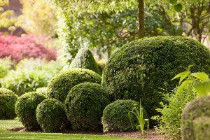 Bildno.: 11223686<br/><b>Feature: 11223659 - Green and Grand</b><br/>Romantic garden in Limburg, Belgium<br />living4media / Pietrek, Sibylle