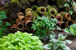 Bildno.: 11223690<br/><b>Feature: 11223659 - Green and Grand</b><br/>Romantic garden in Limburg, Belgium<br />living4media / Pietrek, Sibylle