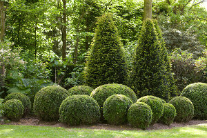 Bildno.: 11223692<br/><b>Feature: 11223659 - Green and Grand</b><br/>Romantic garden in Limburg, Belgium<br />living4media / Pietrek, Sibylle