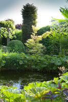 Bildnr.: 11223716<br/><b>Feature: 11223710 - Formvollendet</b><br/>Heerenhof, ein idyllischer Garten in Maastricht<br />living4media / Pietrek, Sibylle