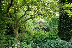 Bildnr.: 11223722<br/><b>Feature: 11223710 - Formvollendet</b><br/>Heerenhof, ein idyllischer Garten in Maastricht<br />living4media / Pietrek, Sibylle