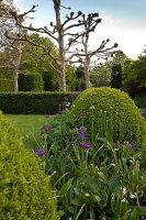 Bildnr.: 11223724<br/><b>Feature: 11223710 - Formvollendet</b><br/>Heerenhof, ein idyllischer Garten in Maastricht<br />living4media / Pietrek, Sibylle