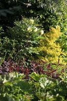 Bildnr.: 11223750<br/><b>Feature: 11223710 - Formvollendet</b><br/>Heerenhof, ein idyllischer Garten in Maastricht<br />living4media / Pietrek, Sibylle