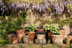Bildnr.: 11223752<br/><b>Feature: 11223710 - Formvollendet</b><br/>Heerenhof, ein idyllischer Garten in Maastricht<br />living4media / Pietrek, Sibylle