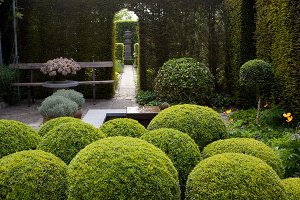 Bildno.: 11223852<br/><b>Feature: 11223835 - Woman's Touch</b><br/>Lush garden in the Netherlands<br />living4media / Pietrek, Sibylle