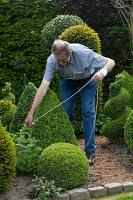 Bildno.: 11223872<br/><b>Feature: 11223835 - Woman's Touch</b><br/>Lush garden in the Netherlands<br />living4media / Pietrek, Sibylle