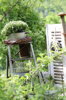 Bildno.: 11233290<br/><b>Feature: 11233253 - The Romantic Garden</b><br/>A shabby chic approach to gardening<br />living4media / Raider, Peter