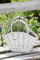 Bildno.: 11233304<br/><b>Feature: 11233253 - The Romantic Garden</b><br/>A shabby chic approach to gardening<br />living4media / Raider, Peter