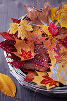 Bildno.: 11239934<br/><b>Feature: 11239933 - Romancing the Leaf</b><br/>Autumn decorations made of leaves<br />living4media / Taube, Franziska