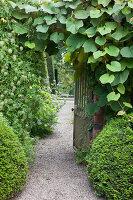 Bildno.: 11247166<br/><b>Feature: 11247147 - A Garden with Tradition</b><br/>Extensive garden surrounding a 16th century house<br />living4media / Herwig, Modeste