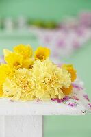 Bildno.: 11255960<br/><b>Feature: 11255956 - Spring Feeling</b><br/>Decorating with spring flowers<br />living4media / Syl Loves