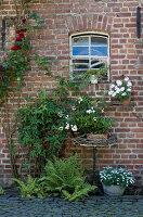 Bildno.: 11263424<br/><b>Feature: 11263422 - Garden Dreams</b><br/>Romantic garden near Cologne<br />living4media / Bauer, Christine