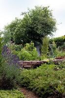 Bildno.: 11263432<br/><b>Feature: 11263422 - Garden Dreams</b><br/>Romantic garden near Cologne<br />living4media / Bauer, Christine