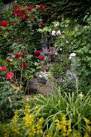Bildno.: 11263440<br/><b>Feature: 11263422 - Garden Dreams</b><br/>Romantic garden near Cologne<br />living4media / Bauer, Christine
