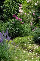 Bildno.: 11263442<br/><b>Feature: 11263422 - Garden Dreams</b><br/>Romantic garden near Cologne<br />living4media / Bauer, Christine
