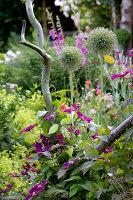 Bildno.: 11263446<br/><b>Feature: 11263422 - Garden Dreams</b><br/>Romantic garden near Cologne<br />living4media / Bauer, Christine