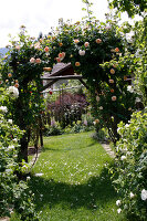 Bildno.: 11263988<br/><b>Feature: 11263941 - Rich in Roses</b><br/>Italian rose garden is a treasure trove of fragrent old fashioned roses<br />living4media / Kompatscher, Anneliese
