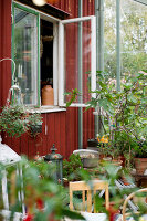 Bildno.: 11264830<br/><b>Feature: 11264822 - Pia&#39;s Orangery</b><br/>This conservatory in Sweden is a whole new world of plants<br />living4media / M&#246;ller, Cecilia