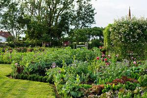Bildno.: 11271982<br/><b>Feature: 11271958 - Swedish Garden</b><br/>Garden in Lynga<br />living4media / M&#246;ller, Cecilia
