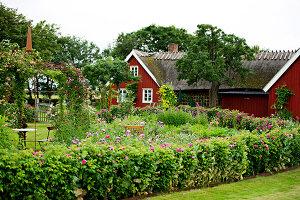 Bildno.: 11272008<br/><b>Feature: 11271958 - Swedish Garden</b><br/>Garden in Lynga<br />living4media / M&#246;ller, Cecilia