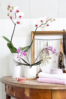 Bildno.: 11304470<br/><b>Feature: 11304464 - Blooming Bath</b><br/>Flowers in the bathroom add charm and flourish in the warm damp atmosphere<br />living4media / M&#246;ller, Cecilia