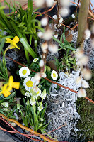 Bildno.: 11304650<br/><b>Feature: 11304632 - Spring at Last</b><br/>Spring bulbs and youthful gardeners define the season<br />living4media / M&#246;ller, Cecilia