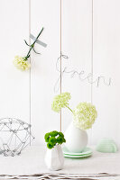 Bildno.: 11305860<br/><b>Feature: 11305840 - The Greening Touch</b><br/>Green flowers add a special kick to any room<br />living4media / Weber, Cornelia
