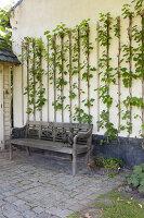 Bildnr.: 11306134<br/><b>Feature: 11306129 - Die feine englische Art</b><br/>Traumgarten im Englischen Stil, Belgien<br />living4media / Herwig, Modeste