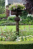 Bildnr.: 11306152<br/><b>Feature: 11306129 - Die feine englische Art</b><br/>Traumgarten im Englischen Stil, Belgien<br />living4media / Herwig, Modeste