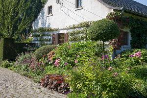 Bildnr.: 11306160<br/><b>Feature: 11306129 - Die feine englische Art</b><br/>Traumgarten im Englischen Stil, Belgien<br />living4media / Herwig, Modeste
