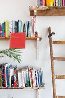 Bildnr.: 11313934<br/><b>Feature: 11313928 - Buntes Familienleben</b><br/>Fr&#246;hliches Haus im Seebad von Den Haag<br />living4media / Klazinga, Jansje
