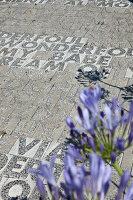 Bildnr.: 11321770<br/><b>Feature: 11321705 - Ein architektonischer W&#252;rfel</b><br/>Selbstdesigntes Haus mit ausgedehntem Aussenbereich f&#252;r die Freizeit, Italien<br />living4media / Rizzi, Laura