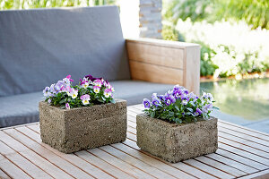 Bildno.: 11325440<br/><b>Feature: 11325345 - The Urban Garden</b><br/>DIY planters that do the job beautifully<br />living4media / Selbermachen Media / Lambertsen, Chris