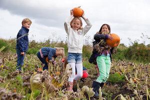 Bildno.: 11345906<br/><b>Feature: 11345897 - Pumpkin Party</b><br/>Pumpkins and Jack-o&#39;-Lanterns<br />living4media / Klazinga, Jansje