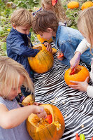 Bildno.: 11345918<br/><b>Feature: 11345897 - Pumpkin Party</b><br/>Pumpkins and Jack-o&#39;-Lanterns<br />living4media / Klazinga, Jansje