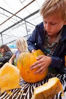 Bildno.: 11345922<br/><b>Feature: 11345897 - Pumpkin Party</b><br/>Pumpkins and Jack-o&#39;-Lanterns<br />living4media / Klazinga, Jansje